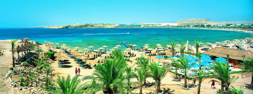 Sonesta beach resort and casino египет foxwoods age to gamble