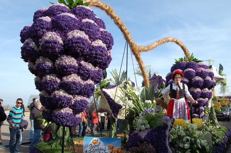 Фото выставок цветов голландии 2